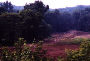 Distant view of the jobsite